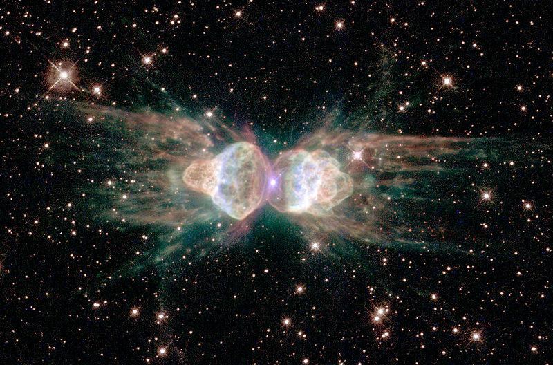 Kwikku, Ant Nebula