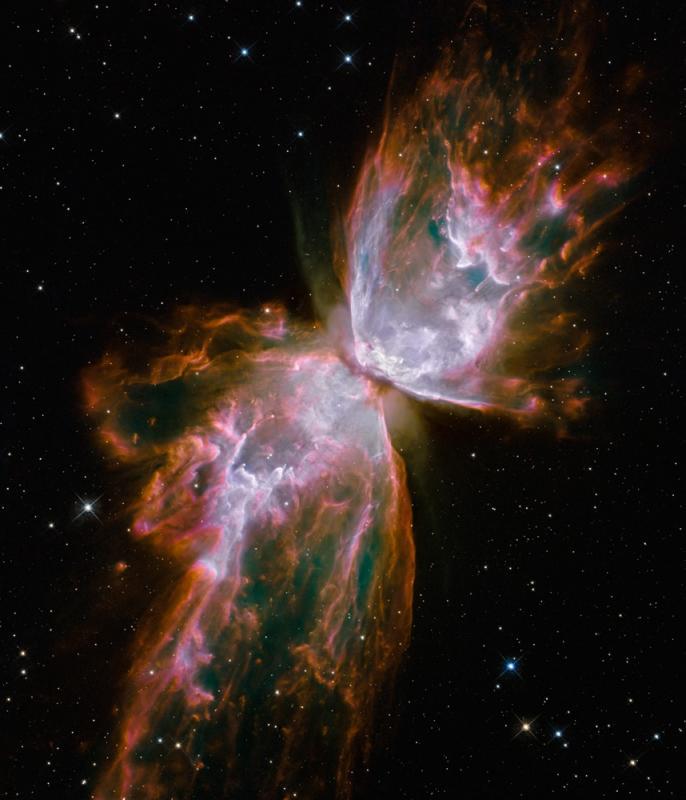 Kwikku, Bug Nebula