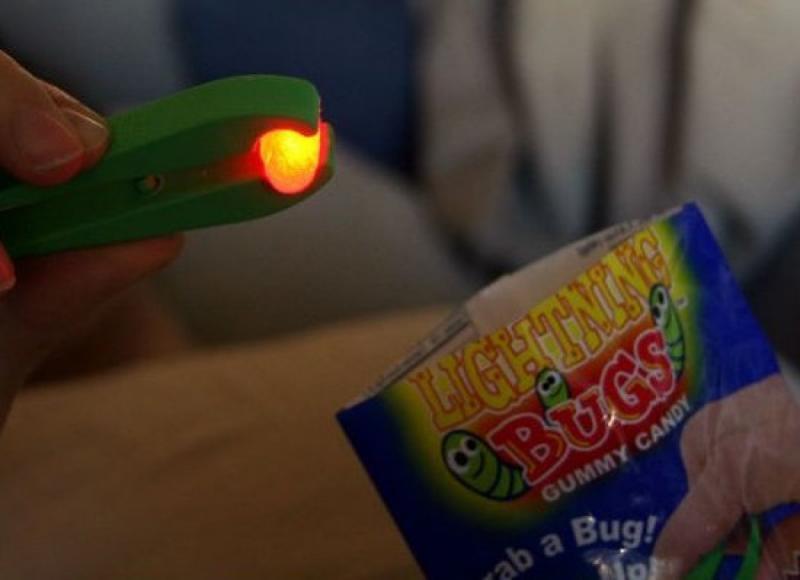 Kwikku, Gimmy Lighting Bugs