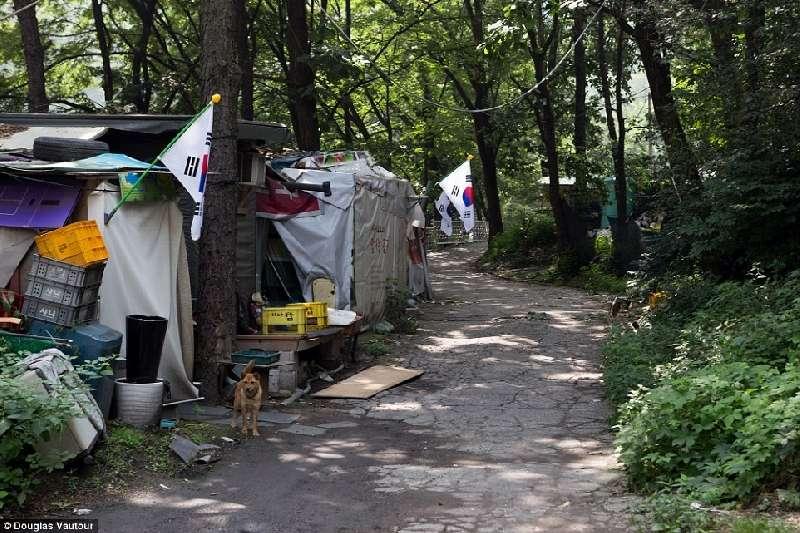 Kwikku, Melambungnya harga lahan di seoul membuat penduduk di sini memilih tinggal di tempat seperti ini