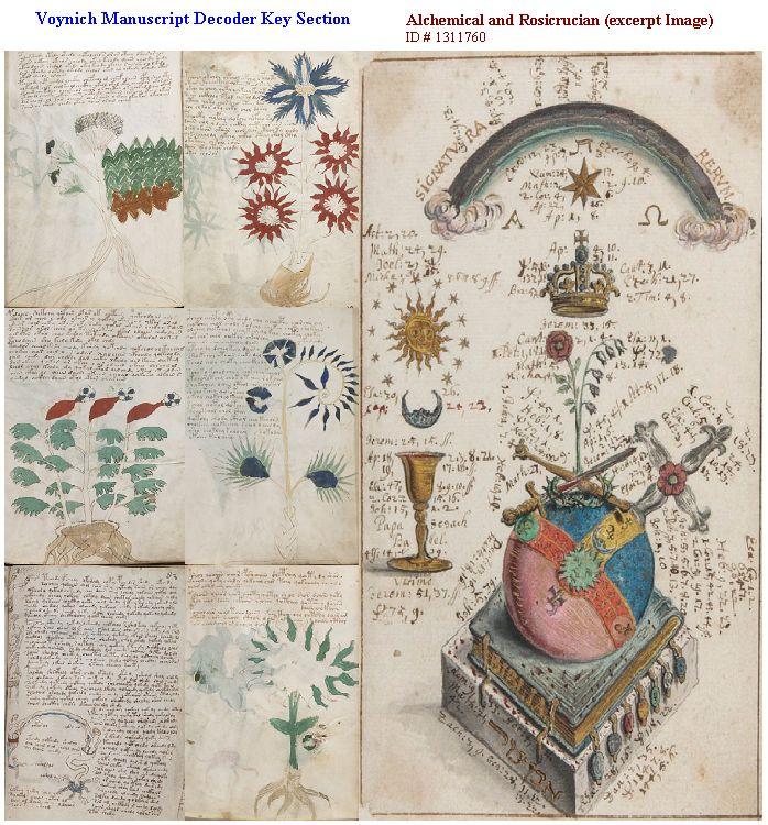 Kwikku, Manuskrip Voynich