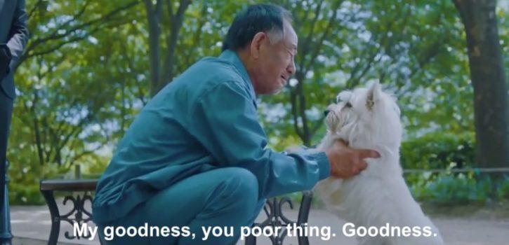 Kwikku, Kisah anjing yang setia
