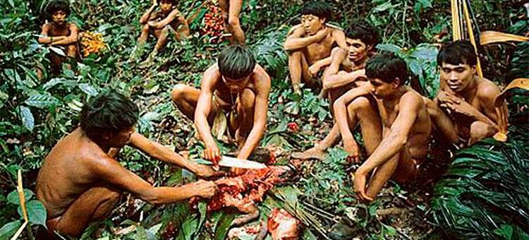 Kwikku, Ritual Endocannibalism di Papua Nugini