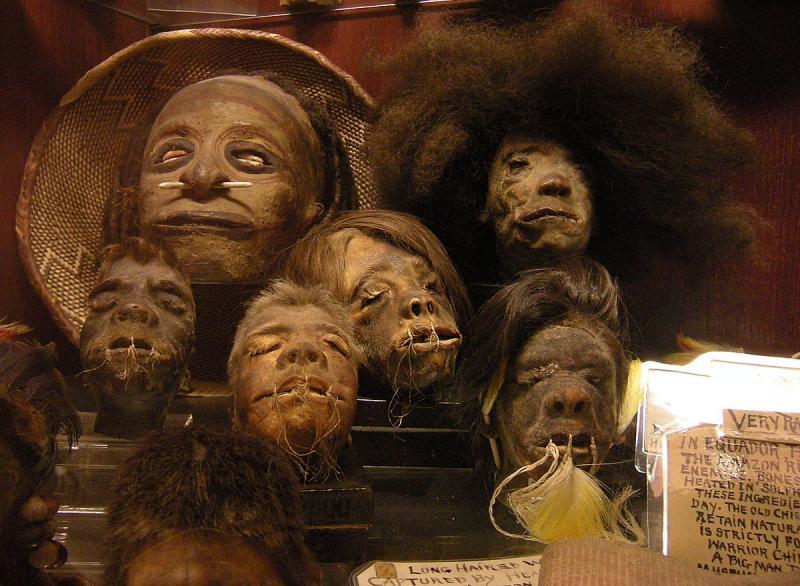 Kwikku, Suku Shuar di Peru dan Ekuador