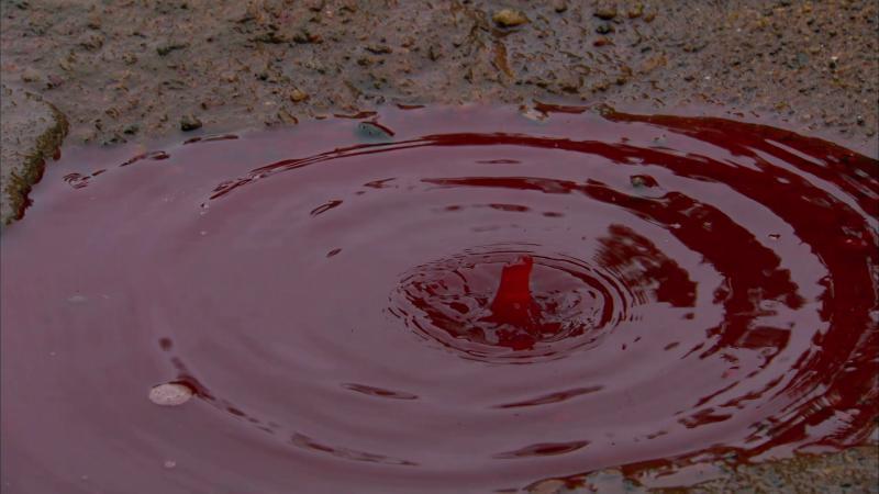 Kwikku, Fenomena Hujan Darah yang Mengerikan