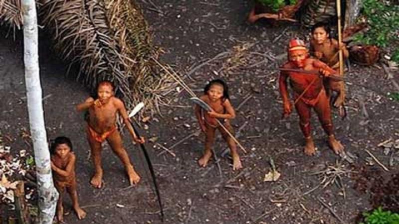 Kwikku, Suku Sentinel adalah Suku Paling Rentan di Dunia