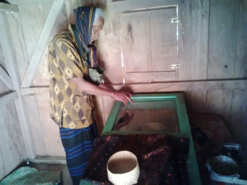 Kwikku, Mumi Kampung Wolondopo di Nusa Tenggara Timur