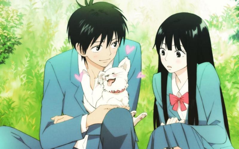 Kwikku, Sawako adalah Gadis yang Mengutamakan Keluarga