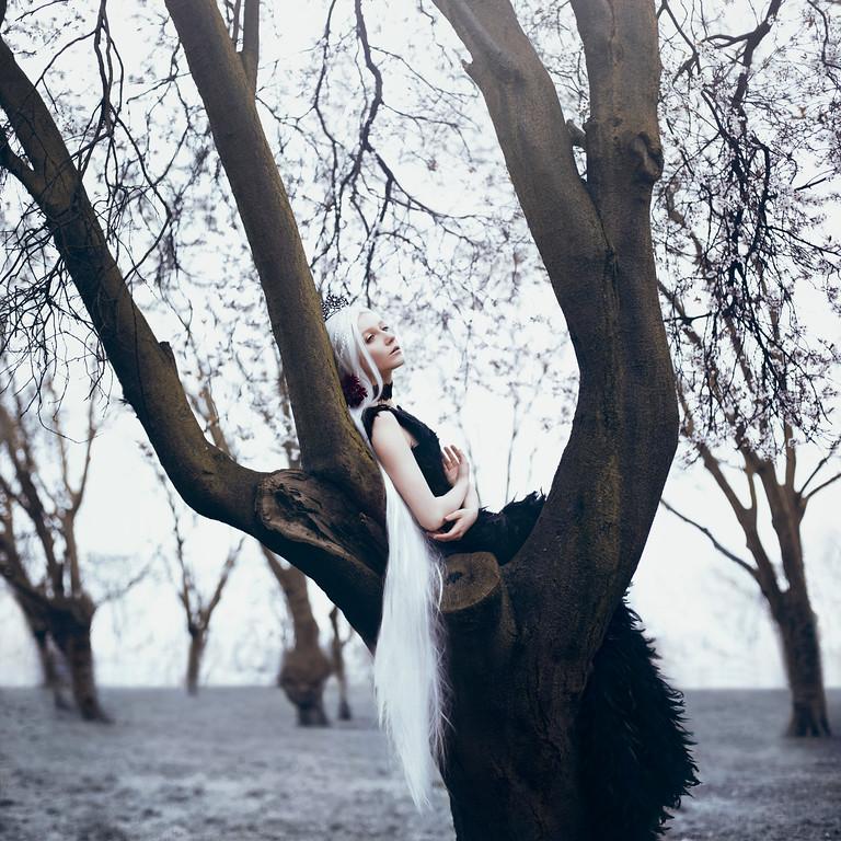 Kwikku, Salju lembut dan puteri dari dunia dongeng