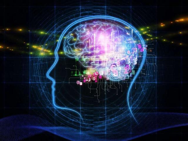 Kwikku, Memori Otak