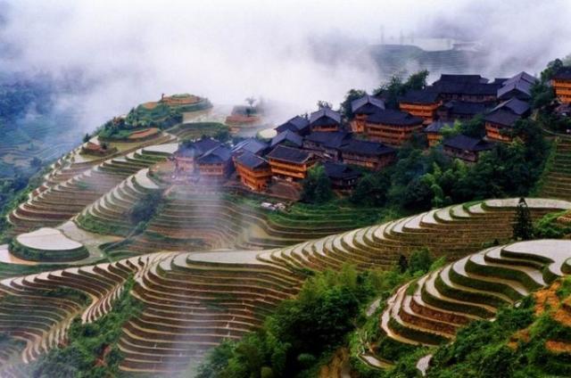Kwikku, Longji Rice Terrace China