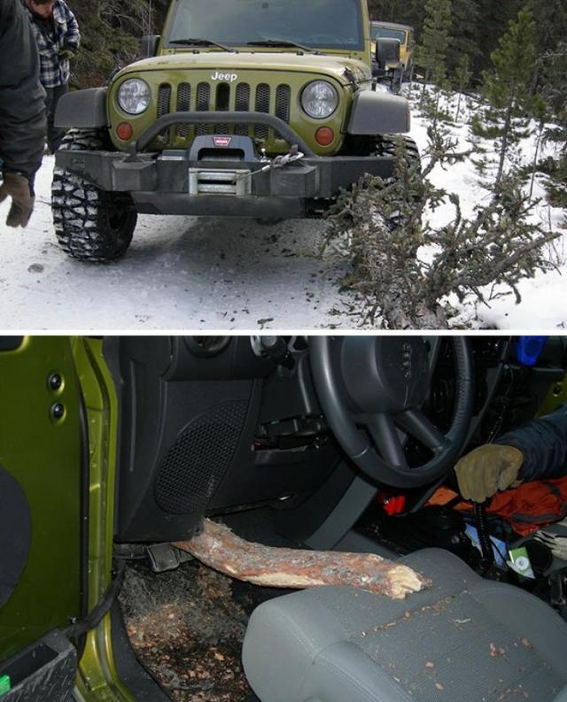 Kwikku, Mobil ini menabrak pohon dan hampir saja merenggut nyawa seorang supir yang mengendarai mobil tersebut Lihat saja batang pohon tersebut sedikit keatas pasti akan menembus perut