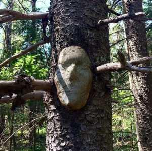 Kwikku, Pohon berwajah manusia