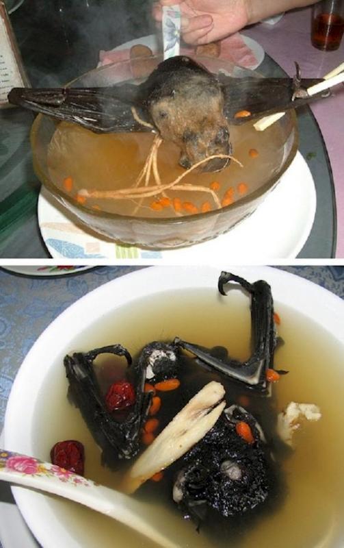 Kwikku, Sup kelalawar raksasa