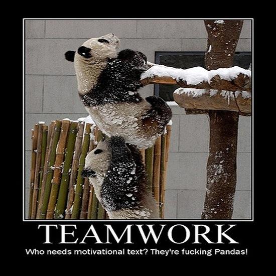 Kwikku, Panda aja bisa mana versi punya kalian wkwkwk
