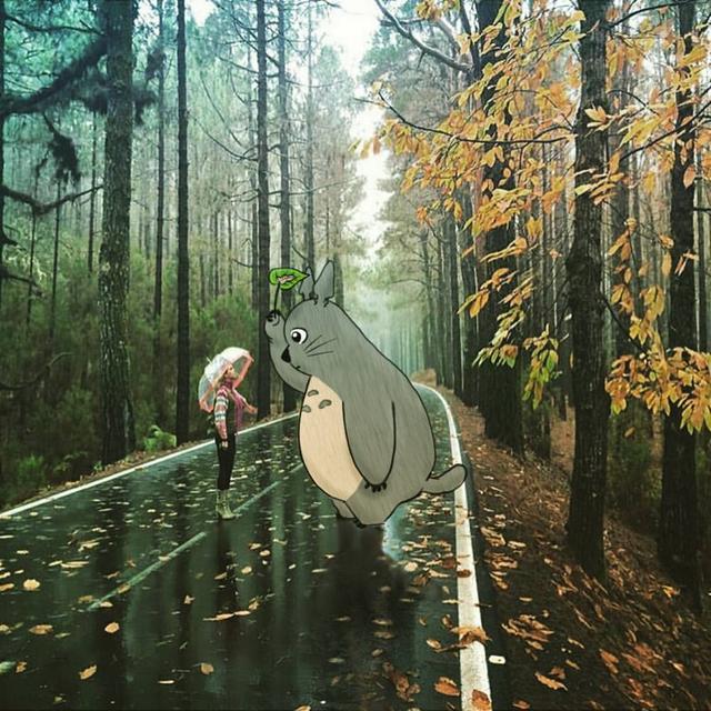 Kwikku, Apa lu liatliat Totoro