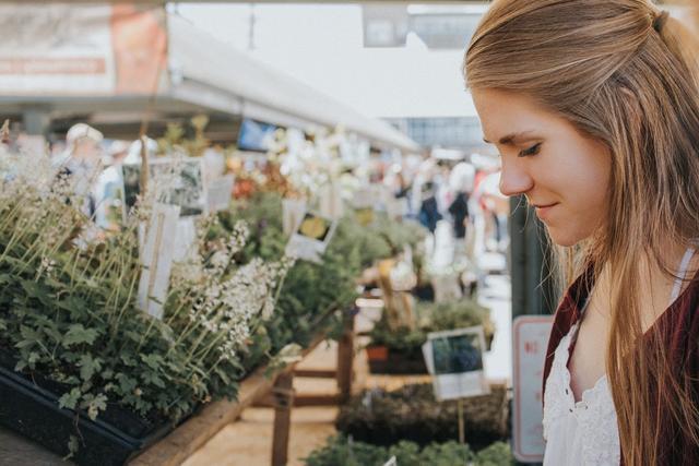 Kwikku, Membeli sayuran di pasar tradisional lebih murah dari pada di supermarket Biasakan dari sekarang