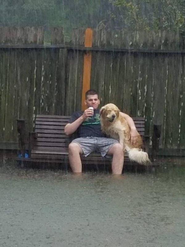 Kwikku, Entah kenapa tetapi nampaknya sepasang sejoli ini gak mau bernangkat dari tempat duduknya ketika banjir sedang melanda daerah tersebut Barangkali mereka sedang lelah ya guys