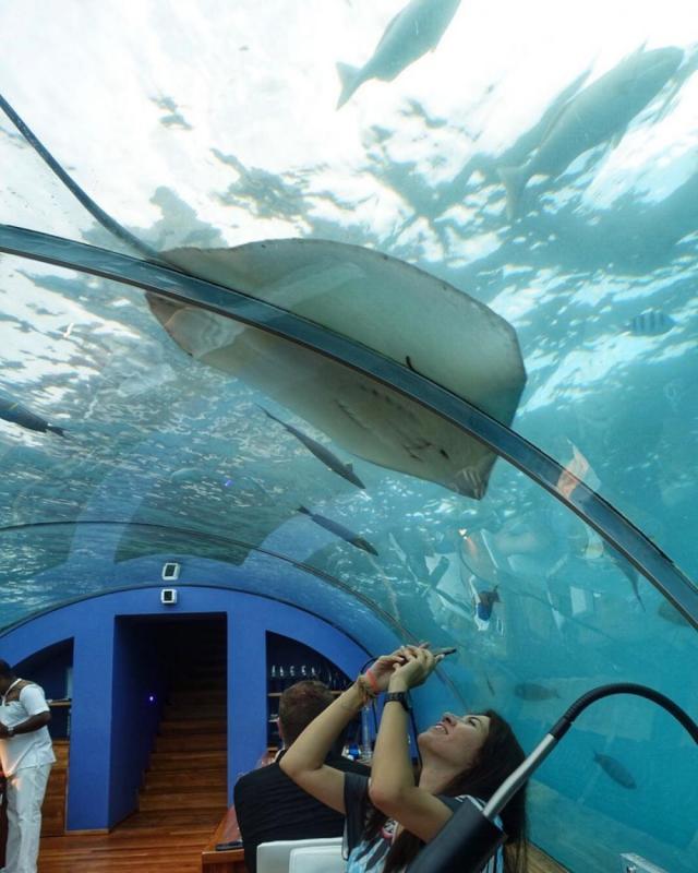 Kwikku, Ithaa Underwater Restaurant Maldives