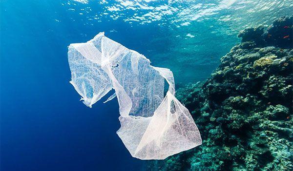 Kwikku, Bahaya dari sampah plastik