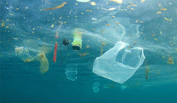 Kwikku, Tidak disetujui oleh produsen plastik