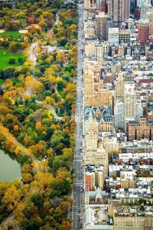 Kwikku, New York dipotret dari atas Tertata sangat rapi sehingga bisa saja orang yang melihat foto ini akan mengira bahwa ini adalah editan
