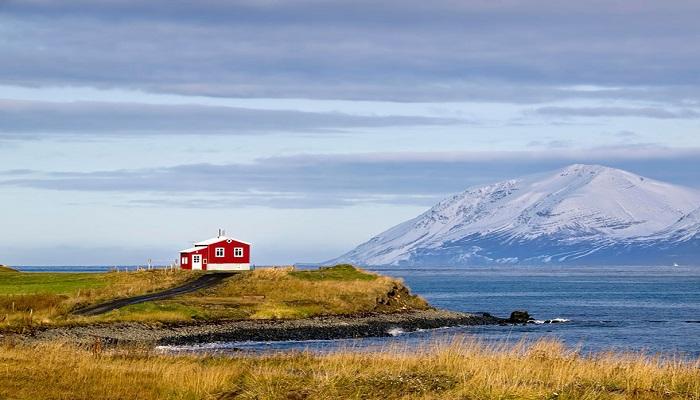 Kwikku, Holmur Reykjanes Islandia