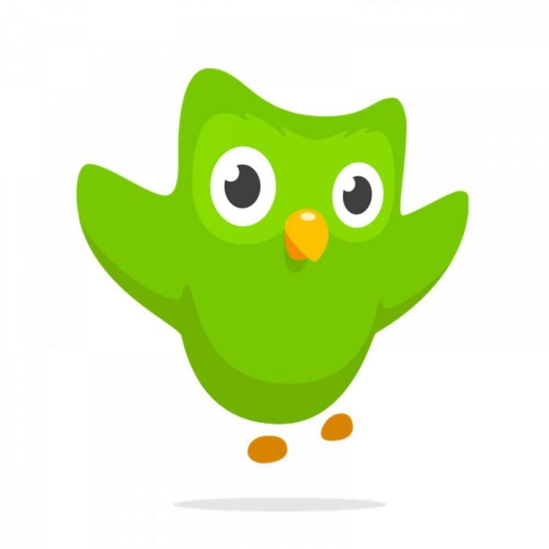 Kwikku, Duolingo