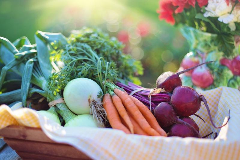 Kwikku, Makanan organik ternyata tetap mengandung pestisida