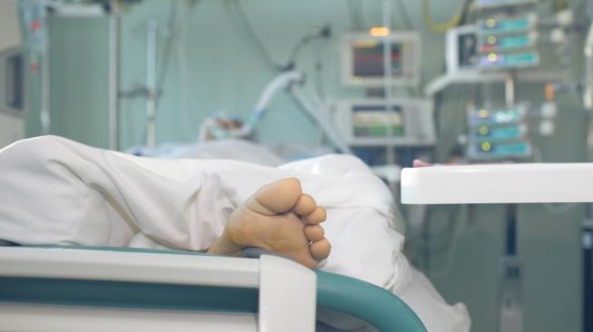 Kwikku, Penurunan fungsi organ tubuh dan penurunan sistem kekebalan tubuh