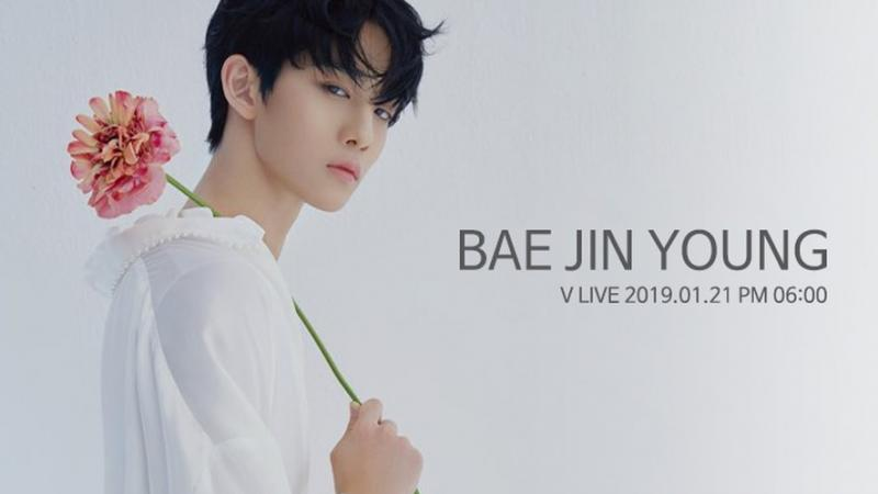 Kwikku, Bae Jin Young  Mei