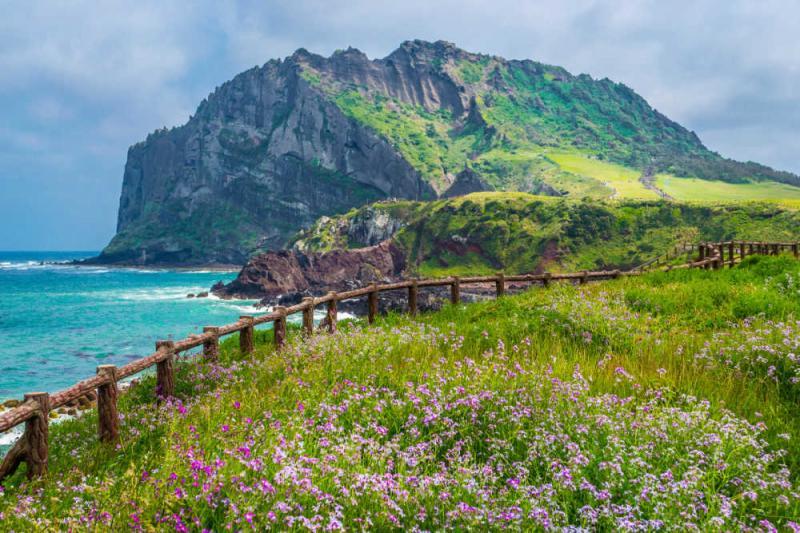 Kwikku,  Jeju Island