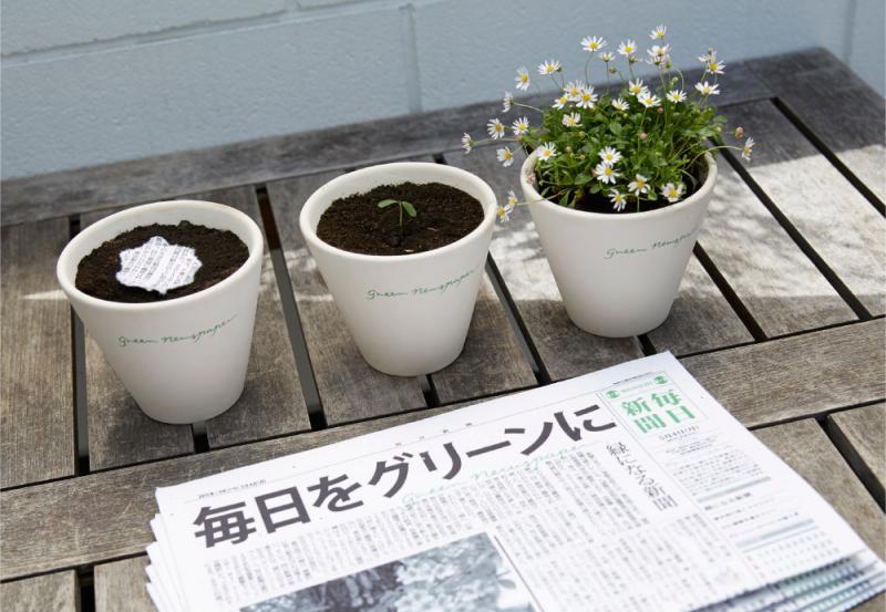 Kwikku, Koran yang bisa ditanam