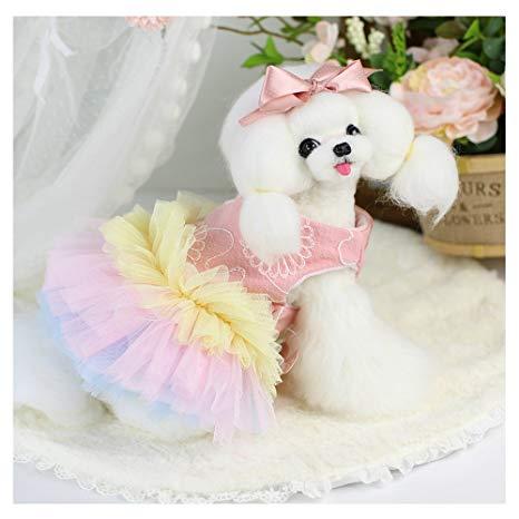 Kwikku, Dress cantik
