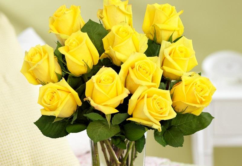 Mau Beri Mawar Sebagai Hadiah Kenali Arti dari Warnanya