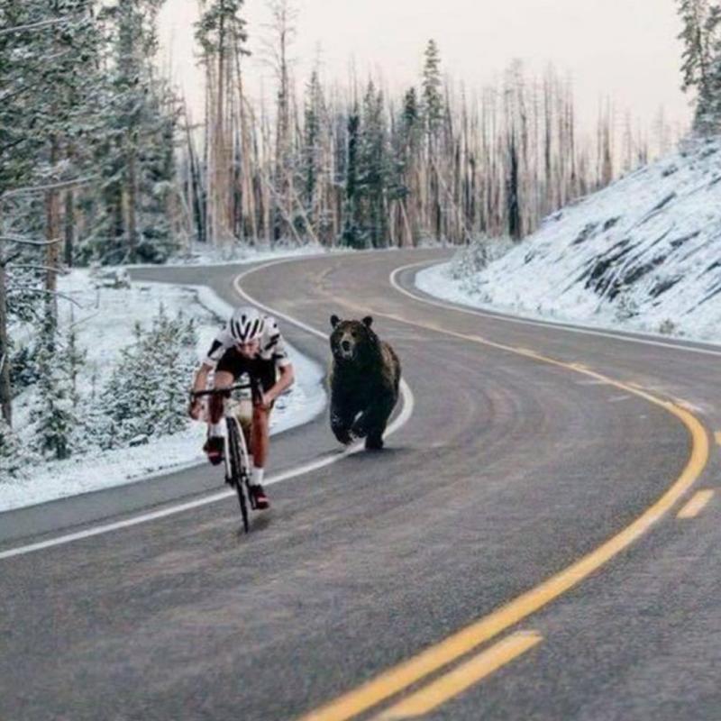 15 Foto Ini Buktikan Balap Sepeda Bukan Olahraga Nyantai